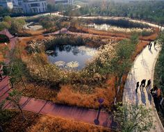 Project Tianjin Qiaoyuan Wetland Park  Designer: Turenscape  Location: Tianjin City, China  Through Regenerative Design and by changing landforms, the natural process of plant adaptation and community evolution is introduced to transform a former deserted shooting range used as a garbage dump, into a low maintenance urban park; providing diverse nature's services for the city including containing and purifying storm water;    http://www.turenscape.com/english/projects/project.php?id=339