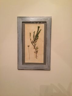 Decor, botanic