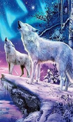 Save Gray Wolf, buy quality products and provide wolf sanctuary! Whats Wallpaper, Wolf Wallpaper, Cartoon Wallpaper, Wolf Photos, Wolf Pictures, Anime Wolf, Mythical Creatures Art, Fantasy Creatures, Beautiful Wolves
