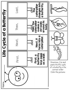 NO PREP Packet (Kindergarten) Life Cycle of a Butterfly! Cut and Paste to show the Sequence of events!Life Cycle of a Butterfly! Cut and Paste to show the Sequence of events! First Grade Science, Kindergarten Science, Science Classroom, Kindergarten Shirts, Science Lessons, Science Activities, Sequencing Activities, Art Lessons, Life Cycle Craft