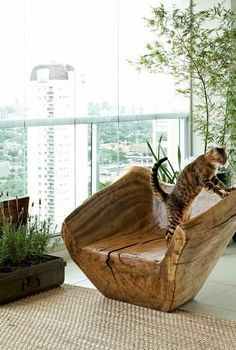Amazing Tree Trunk Chair With Cat