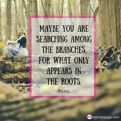 Maybe you are searching in the branches for what only appears in the #roots - #Rumi   Sometimes the answers we seek are within...deep within.  Learn all about the mysterious and ever-elusive #MulaBandha (a.k.a. The #RootLock and some other names it should never be called) in the current feature on the MOJO #blog and #TheMOJOShow all over at http://ift.tt/1rSttye (active link in our bio).   Be sure to check it out while our #freevideo of the week (Hero and Reclined Hero with @saraswati6 Sara…