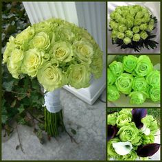 #Green #Roses ##Wedding #Flowers #Florists #Floral #Spring #Blossom #Buds #Seeds #Garden #Gardening #Bouquets #Botanic #Gardens #Nature -- Click to see full size image at http://partymotif.com