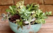 Faux Aged Copper Succulent Planter | Where The Smiles Have Been