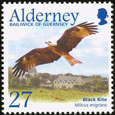 Black Kite stamps - mainly images - gallery format