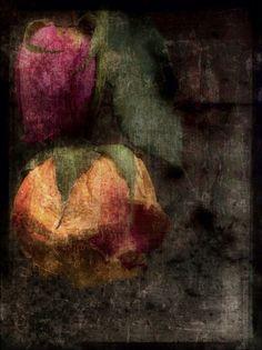 rome flowers at the flea market copy by Jack Barnosky