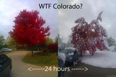 This is Colorado.