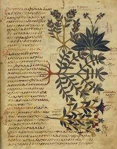 Dioscorides - De materia medica - Greek version