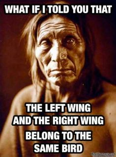 Absolutely right! Left wing, right wing-it's all the same chicken.  That's a big chicken!