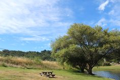 Picnic grounds at The Cheese Factory, Marin.  http://www.marinfrenchcheese.com/