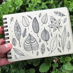 Day 12 of #The100DayProject  Leaf. #100DaysOfDrawingThingsInDifferentVariations