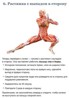 Health And Beauty, Health And Wellness, Health Fitness, Human Muscle Anatomy, Best Full Body Workout, Yin Yoga Poses, Yoga Lessons, Workout Plan For Women, Body Training