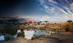 Tag & Nacht in einem einzigen Bild: Serengeti Nationalpark/Tansania #afrikaindividuell #barefoottraveldesign #geo