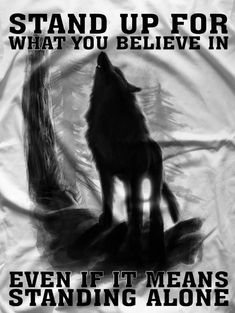 If you say what you think you will die as a lone wolf. - If you say what you think you will die as a lone wolf. Like me today … – noticed – - Wise Quotes, Great Quotes, Motivational Quotes, Inspirational Quotes, Lone Wolf Quotes, Wolf Love, Wolf Pictures, Warrior Quotes, Wolf Spirit
