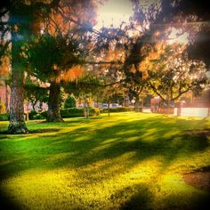 198 Best Altadena Ca My Home Images Los Angeles County