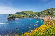 Look! Recognize that horseshoe-shaped cove? Yes, it's Grace-by-the-Sea! Dorset photographer shares stunning pictures of his home county to encourage people to holiday there Dorset Travel, Beach Cove, Jurassic Coast, House By The Sea, Waterfall, Scene, The Incredibles, Landscape, Mail Online