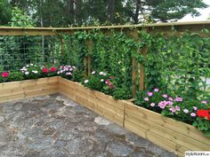 Trädgård under ständig planering, renovering och förbättring.