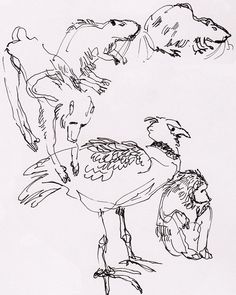 zoo animal drawings sketches some animals drawing kaynak tieremalen29 sketch since while posted been
