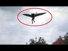 Mysterious Real Creatures Make You Dont Believe Exist Caught on Tape-Doomsday Signs? - YouTube
