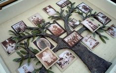 Como hacer arbol genealogico-4