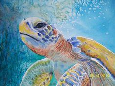 Sea turtle paintings | Finding Art: The Galapagos Green Sea Turtle