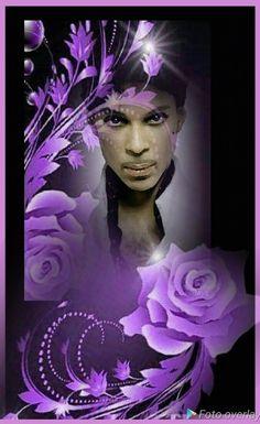 Vanity 6, The Artist Prince, Endless Love, Roger Nelson, Prince Rogers Nelson, Caricatures, Bordeaux, Heaven, Purple
