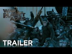 Watch: The New Trailer for 'War for the Planet of the Apes' Pits Andy Serkis Against Woody Harrelson
