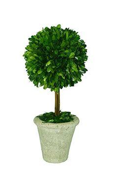 $29.95 each plus $8 shipping Mills Floral Company Box Topiary, Single, Large, 6 x 16 Mills Floral Company http://www.amazon.com/dp/B003ANHABQ/ref=cm_sw_r_pi_dp_h0CJub1CHRB6D