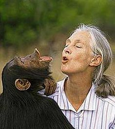 Jane Goodall was criticized for naming chimpanzees instead of numbering them!