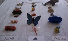 Land - Air - Water Sorting.  Sort small toys for land (car, bus, train, cow, dog, plant, ant), air (plane, bird, helicopter, bee, butterfly), & water (fish, dolphin, octopus, boat, frog, lilypad).