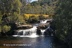 This was the cascade seen from the road bridge near one end of the Enchanted Walk (though we didn't end up doing that walk) Cradle Valley, Tasmania, Australia Tasmania, Waterfalls, Enchanted, National Parks, Bridge, Australia, World, Outdoor, Outdoors