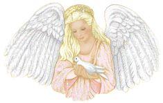 Výsledok vyhľadávania obrázkov pre dopyt anjelské kvety