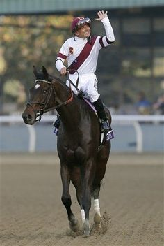 Royal Delta  We had so much fun yesterday at the Breeders Cup  This was a great race