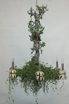 The Enchanted Chandelier hung in the great hall of King Archon. It was well named, for on midsummer night, the dryads would. Elle Decor Magazine, Diy Lampe, Enchanted Garden, Enchanted Forest Bedroom, Midsummer Nights Dream, Fairy Houses, My New Room, Home Accents, Light Fixtures