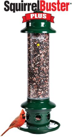 Brome Squirrel Buster Plus Squirrel Proof 1024 Bird Feeder
