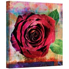 Rose by Elena Ray Gallery-Wrapped Canvas