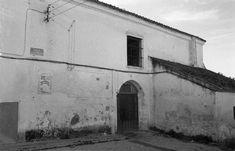 Old Photography, Exhibitions, Naturaleza, Fotografia