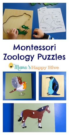 Our favorite Montessori materials are zoology puzzles. The puzzles teach a hands-on approach for the five main Montessori classes of vertebrates.
