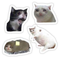 'sad cats ' Sticker by Luci S. Meme Stickers, Snapchat Stickers, Tumblr Stickers, Phone Stickers, Printable Stickers, Funny Iphone Wallpaper, Wallpaper Stickers, Happy Wallpaper, Spongebob Birthday Party