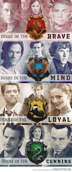 Different types of houses… except Matt Smith isn't so much a Ravenclaw as a Hufflepuff