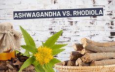 Rhodiola şi ashwagandha se numără printre plantele medicinale cele mai renumite pentru efectele lor excepţionale asupra sănătăţii. Originare respectiv din regiunile reci ale Norvegiei şi Indiei, primele lor utilizări datează din Antichitate. Încă din acea epocă li se atribuiau numeroase beneficii terapeutice. Ambele sunt însă cunoscute mai ales pentru capacitatea lor de a interveni în situaţii de stres. Reducing Cortisol Levels, High Cortisol, Rhodiola Rosea, Chronic Stress, Depression Symptoms, Neurotransmitters, How To Relieve Stress, Herbalism, Stuffed Mushrooms