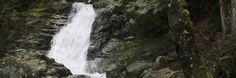 Crystal Falls Coquitlam (10 min drive from Coquitlam Centre !!) 2 hr trail