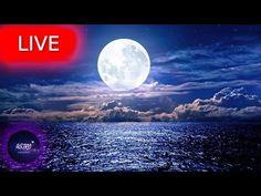 Deep Sleep Music, Meditation Music, Relaxing Music, Stress Relief, My Music, Zen, Channel, Universe, Calm