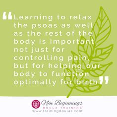 The psoas muscle is the deepest core muscle in the body. When tight the psoas can cause many problems including lower back pain. Learn how to stretch the psoas with dozens of the best stretches that can reach deep into your body to stretch it. Pregnancy Labor, Pregnancy Pillow, Psoas Muscle, Muscle Body, Psoas Stretch, Doula Training, Shampoo Brush, Learning To Relax, Hair Scalp