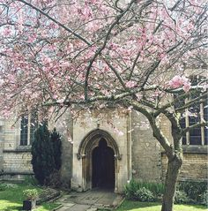 Spring in Stamford 🌸⛪️ Stamford England, Alice, Spring, Instagram Posts, Beauty, Beauty Illustration