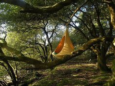 "treehugger: ""Cozy Cacoon is part hammock, part tree tent, all fun "" Outdoor Spaces, Outdoor Gear, Outdoor Living, Indoor Outdoor, Nest Chair, Hanging Tent, Suspended Tent, Hanging Chairs, Santa Cruz"