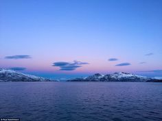 Paul took a boat trip around Kaldfjorden which looks particularly stunning in the morning when there's an ethereal half-light from the weak winter sun