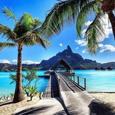 Vacation to Bora Bora and/or the Bahamas Vacation Destinations, Dream Vacations, Vacation Spots, Beautiful Hotels, Beautiful Places, Places To Travel, Places To See, Places Around The World, Around The Worlds