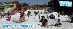 Snow Kingdom @ Seibu Amusement Park   Tokorozawa