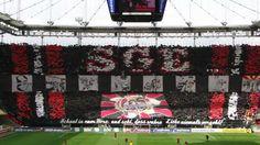Choreo Eintracht Frankfurt  SGE-Aue 2011/12
